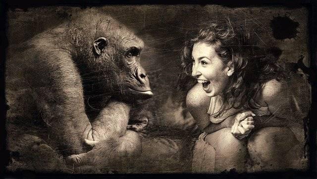 『面白い』 英語でなんて言えばいいですか?-女性がチンパンジーに向かって笑っている-函館英会話教室EigoLa