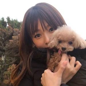 深田恭子の写真