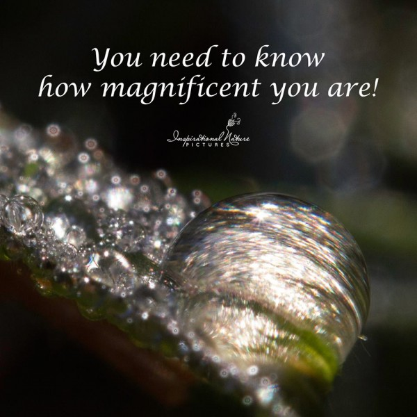You need to know how magnificent you are!