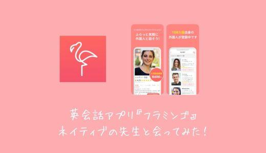 【体験記】英会話アプリの「フラミンゴ」でネイティブの先生と会ってみた!