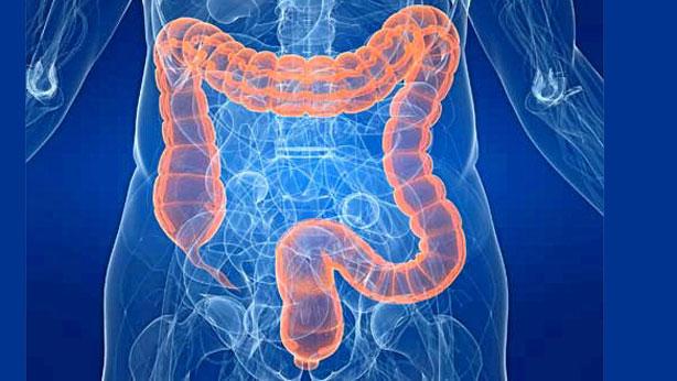 programa-cue-intestino-gru.jpg?fit=614%2C346