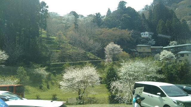 吉野山ロープウェイが登っていく風景