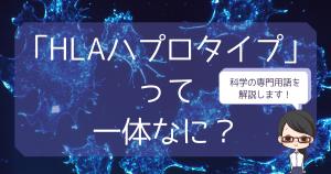 【ことば解説】HLAハプロタイプ