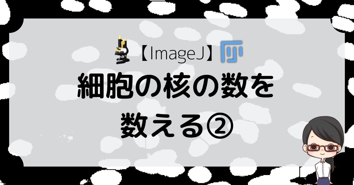 【ImageJ】細胞の核を数える#2〜輝度によって核と背景を区別する