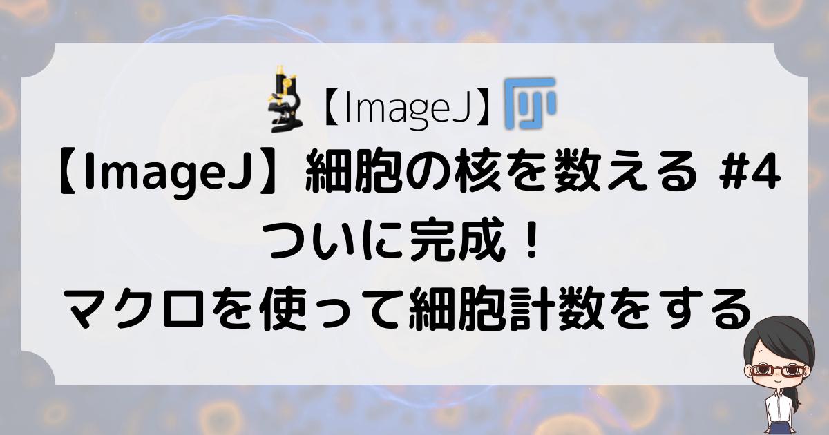 【ImageJ】細胞の核を数える #4〜ついに完成!マクロを使って細胞計数をする