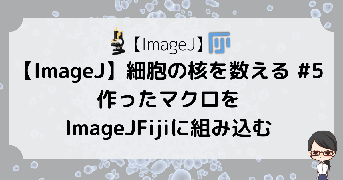 【ImageJ】細胞の核を数える #5〜作ったマクロをImageJFijiに組み込む