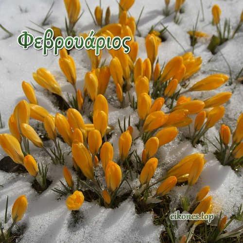 Φεβρουάριος:Καλό μήνα! (εικόνες)