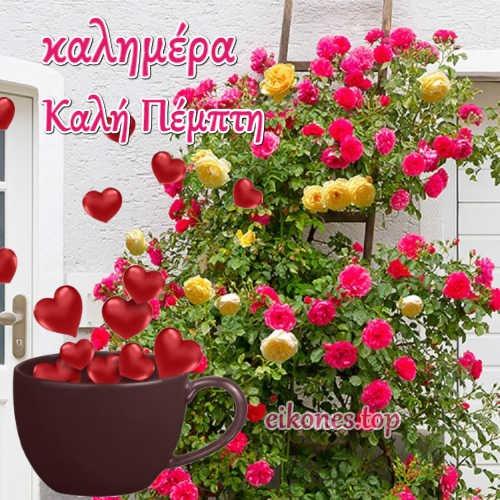 Καλημέρα και καλή Πέμπτη με τις ωραιότερες καλημέρες για σένα!