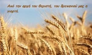 Παροιμίες για τον  Ιούνιο