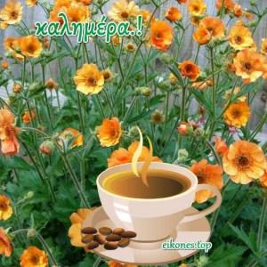 Όμορφη μέρα εύχομαι να περάσετε φίλοι μου.!!   Καλημέρα σε όλους!