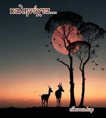 Καληνύχτα και όνειρα γλυκά.... με eikones.top