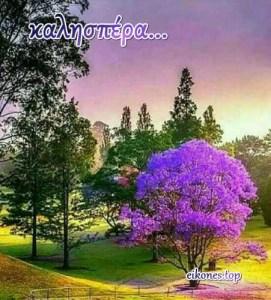 Καλησπέρα σε όλους,καλό απόγευμα με όμορφες eikones.top