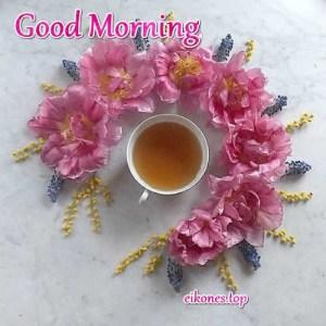 Good Morning με όμορφες εικόνες για ένα πρωινό χαρούμενο ξεκίνημα.!