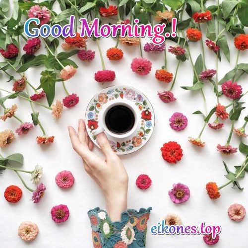 Good morning flowers & coffee,eikones.top