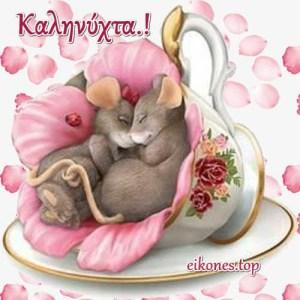 Όμορφες  Εικόνες Τοπ για Καληνύχτα.!