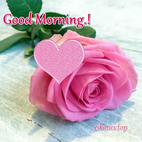Όμορφα Τριαντάφυλλα για Good Morning.!
