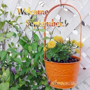 Read more about the article Εικόνες για:Welcome September, Hello September.!