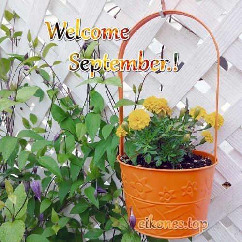 Εικόνες για:Welcome September, Hello September.!