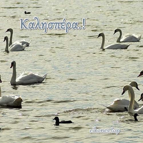 Εικόνες για καλησπέρα-eikones.top