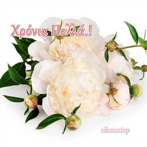 'Ομορφες ευχές χρόνια πολλά σε εικόνες .eikones.top