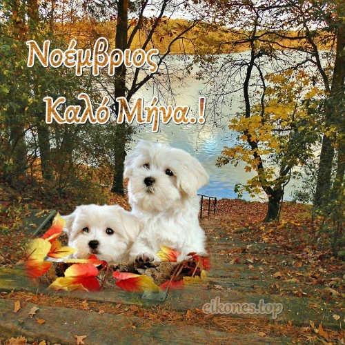 Νοέμβριος-eikones.top