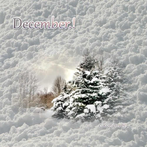 Top Images For December.!-eikones.top