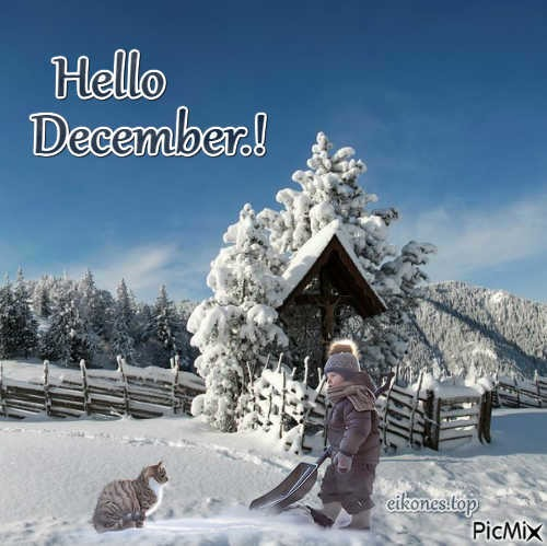 Top Images For December.!eikones.top