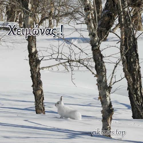 Εικόνες Τοπ για τον Χειμώνα.