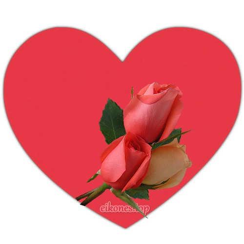 Read more about the article Καρδιές με τριαντάφυλλα. Εικόνες αγάπης χωρίς λόγια.!