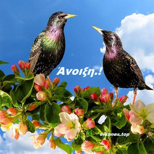 Εικόνες της Άνοιξης!-eikones.top