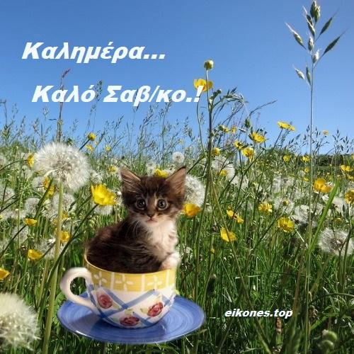 Καλημέρα Και Καλό Σαβ/κο Με Εικόνες Της Άνοιξης.!-eikones.top