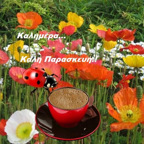 Παρασκευή με χρώματα της Άνοιξης. Καλημέρα.!-eikones.top