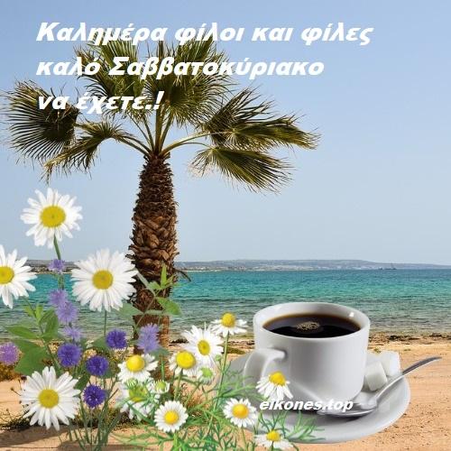 Read more about the article Καλημέρα φίλοι και φίλες καλό Σαββατοκύριακο να έχετε!