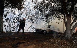Read more about the article Νεκρός 38χρονος εθελοντής πυροσβέστης στην Ιπποκράτειο Πολιτεία