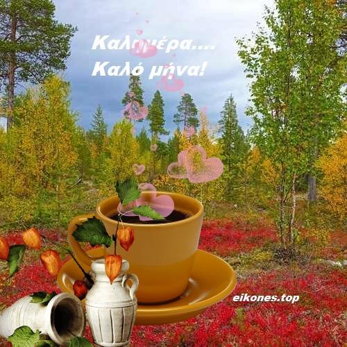 Read more about the article Φθινοπωρινές εικόνες για καλημέρα-καλό μήνα.!