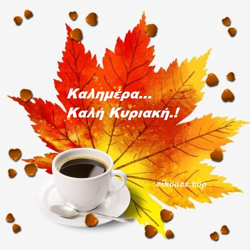 Read more about the article Φθινοπωρινές εικόνες για καλημέρα Κυριακής.!