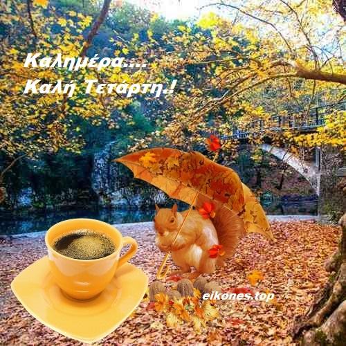 Read more about the article Η Πρώτη μας φθινοπωρινή Τετάρτη… Καλημέρα σε όλους.!  Καλό Σεπτέμβρη.!!!