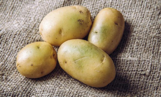 Read more about the article Άμεσος κίνδυνος δηλητηρίασης αν δείτε αυτό σε μια πατάτα: Είναι σημάδι τοξίνης!