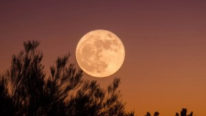 Read more about the article Πώς επηρεάζει η Πανσέληνος Σεπτεμβρίου το κάθε ζώδιο
