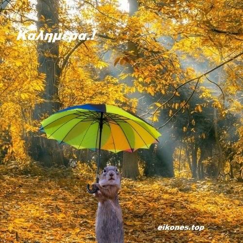 Φθινοπωρινές Εικόνες Τοπ Για Καλημέρα