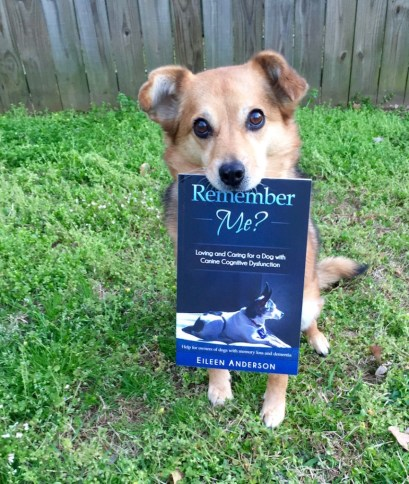 Summer, a sable colored mixed breed dog, holds a book: Remember Me? Loving and Caring for a Dog with Canine Cognitive Dysfunction by Eileen Anderson