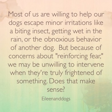 Most of us are willing to help our dogs escape minor irritations like a biting insect, getting wet in the rain, or the obnoxious behavior of another dog. But because of concerns about reinforcing fear, we may be unwilling to intervene when they're truly frightened of something. Does that make sense?