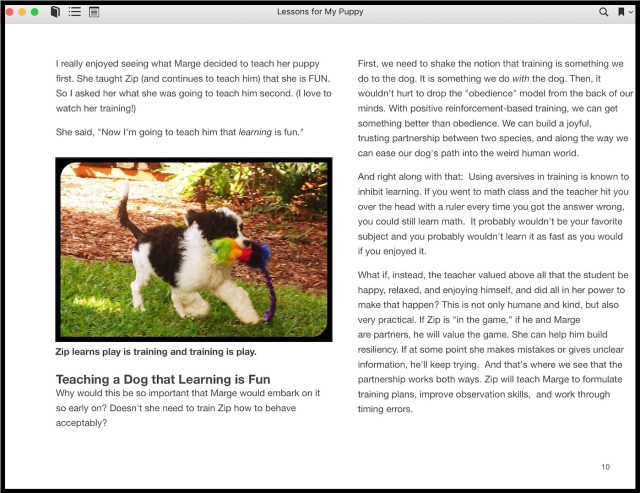 Sample page of puppy training book