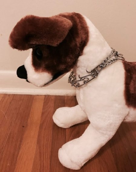 stuffed dog modeling a loosely fitted prong collar