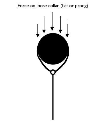 diagram of the force on a loosely fitted collar