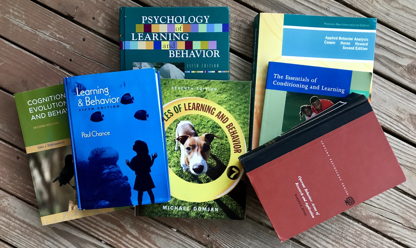 A sampling of learning theory research books