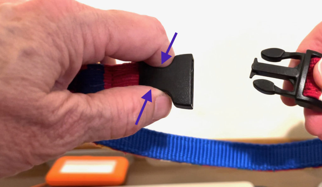 Fingers pressing on the receptacle portion of a plastic collar buckle so as to dampen the sound