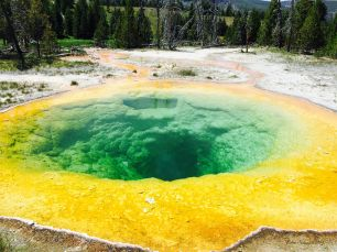 Pools along the trails near Old Faithful