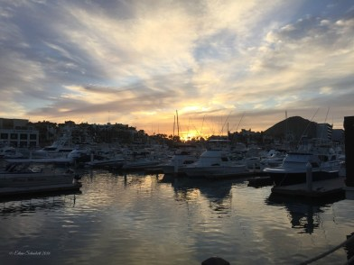 The Harbor at Dawn