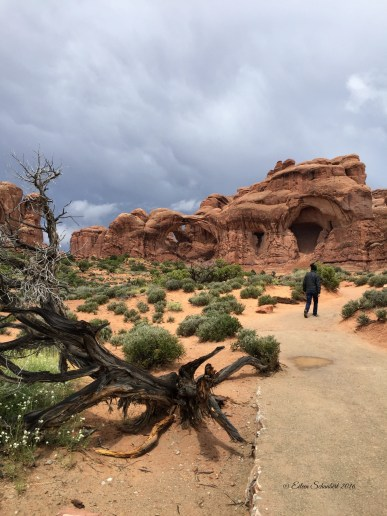 Trail to Double Arch